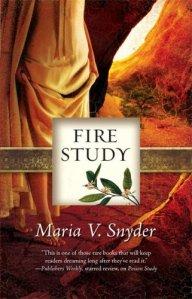 Fire Study (Study, Book 3)