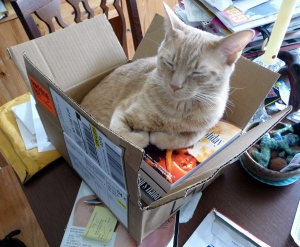 Pel in a box