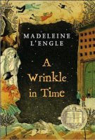 Madeleine's A Wrinkle (A Wrinkle in Time by Madeleine L'Engle (Paperback - May 1, 2007))